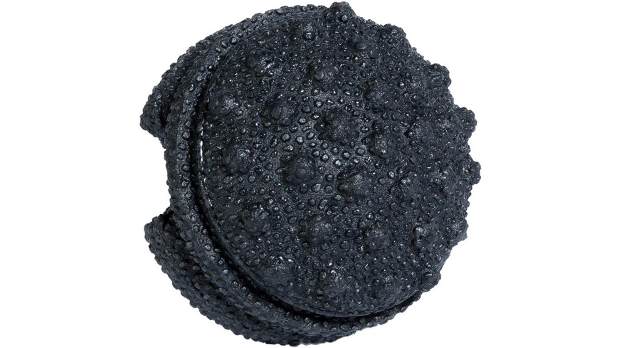 BLACKROLL Twister Faszienball