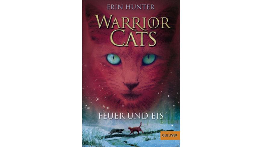 Warrior Cats Staffel 1 02. Feuer und Eis