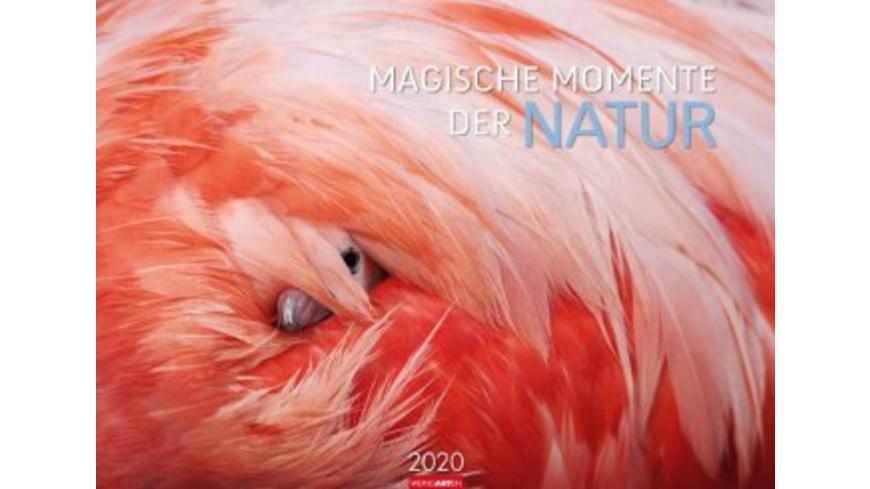 Magische Momente der Natur - Kalender 2020