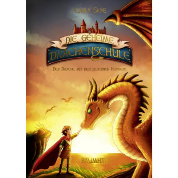 Die geheime Drachenschule - Der Drache mit den sil