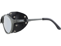 ALPINA SIBIRIA Sportbrille