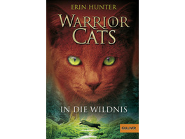 Warrior Cats Staffel 1 01. In die Wildnis