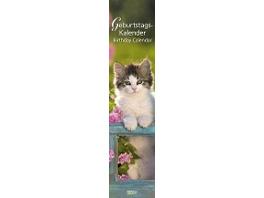 Geburtstags-Langplaner Cats