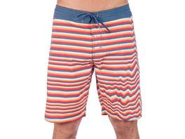 Aura Stoney 19'' Boardshorts